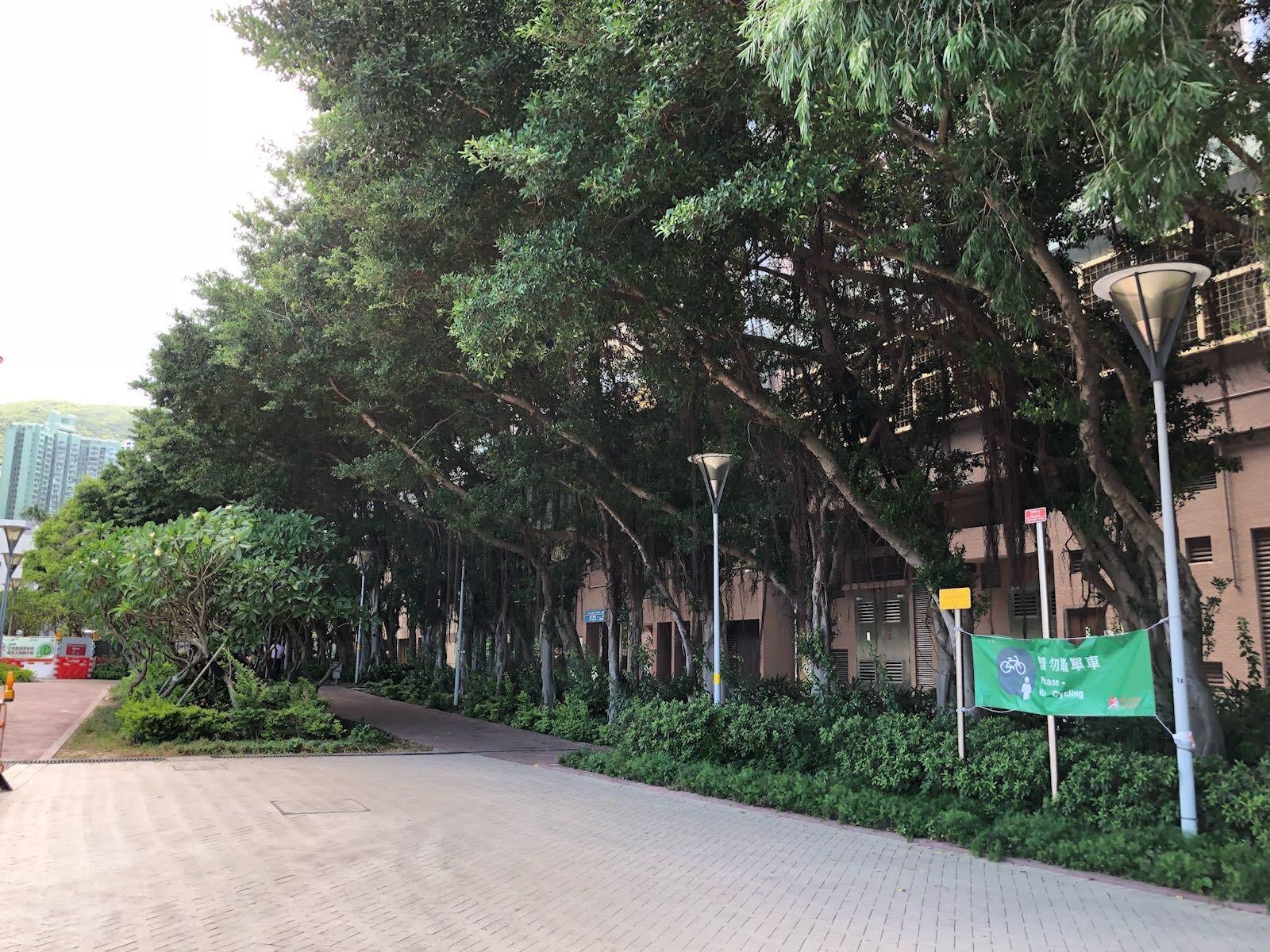 Siu Sai Wan Promenade's no cycling area