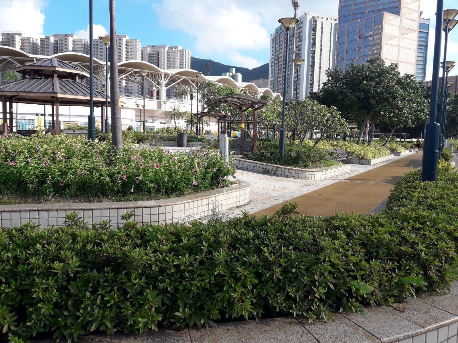 Sui Sai Wan Promenade's building structions around