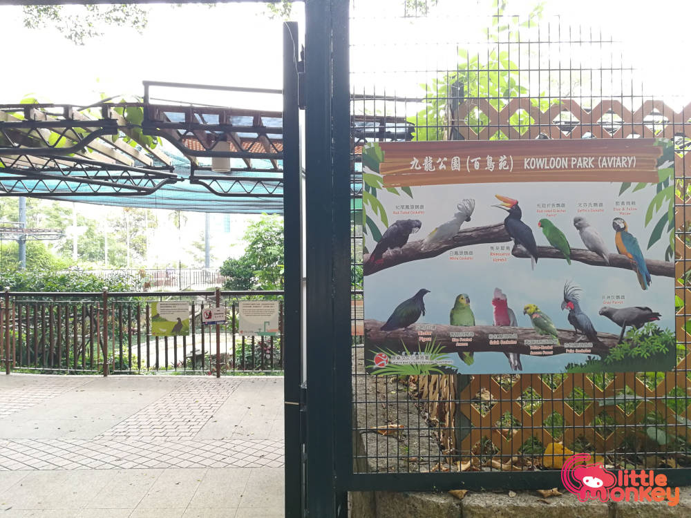 Kowloon Park's exotic birds in aviary