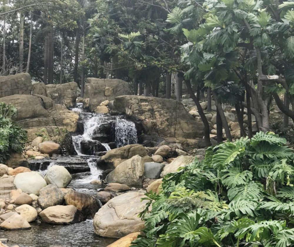 Inspiration Lake's Arboretum